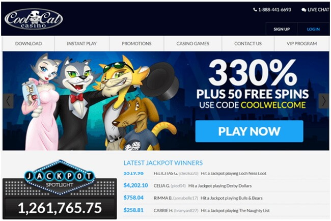 Cool Cat Casino App