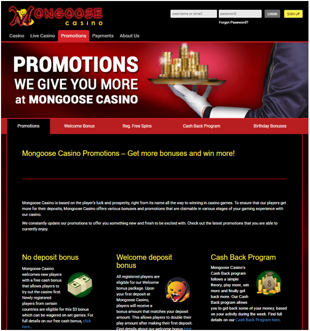 Bonuses at Mongoose casino