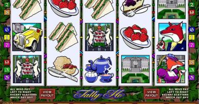 Tally Ho app